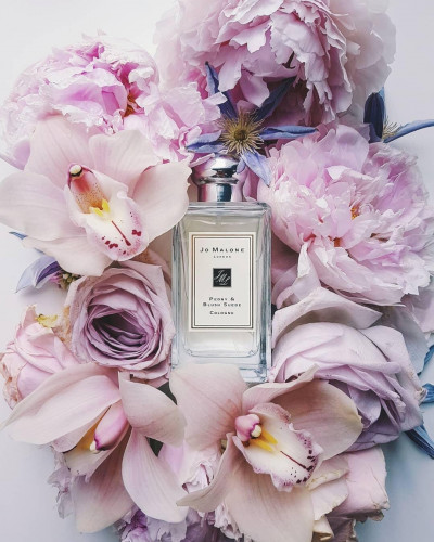 Peony & Blush Suede Cologne 100 ml