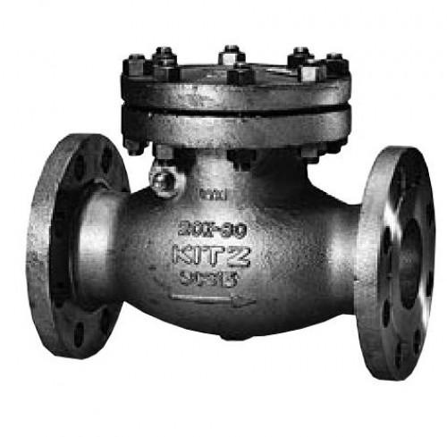 KITZ Stainless Steel Swing Check Valve SCS14A 20k Psi. Flanged 5 Inch. model.20UOAM(T)