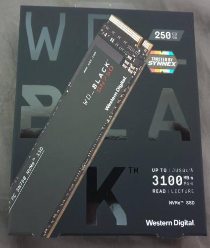 423.SSD 250GB WESTERN BLACK M.2 NVME (WDS250G3X0C) W.5Y
