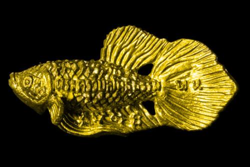 ปลากัดสารพัดนึก หล่อโลหะ รุ่น 3 ปี 56 เนื้อทองผสม ลป.น่วม วัดโพธิ์ศรีเจริญ
