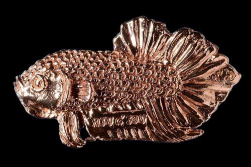 ปลากัดสารพัดนึก (ครบ ๘ รอบ) ปี 58 เนื้อทองแดง พิมพ์เล็ก ลป.น่วม วัดโพธิ์ศรีเจริญ