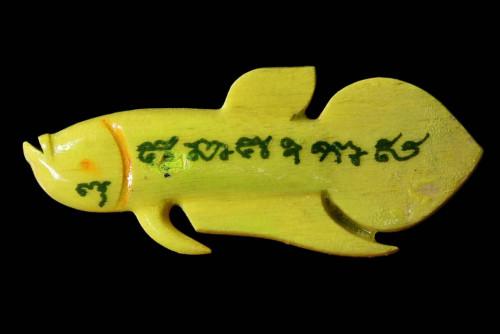 ปลากัดสารพัดนึก พิเศษ จุ่มสี ไม้กาหลง ปี 55 ลป.น่วม วัดโพธิ์ศรีเจริญ