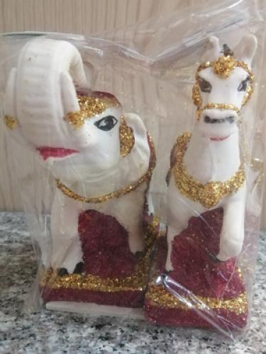 ช้างม้าคู่เพชร(ญ)[259]