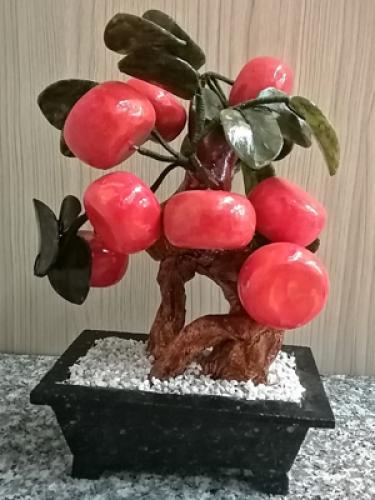 ต้นส้ม 8 ลูก[999]