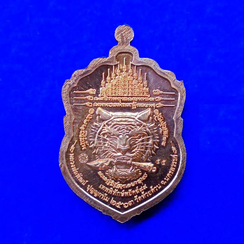 เลขสวย 55 เหรียญเสมา เทพพิทักษ์พยัคฆ์ 99 หลวงพ่อพัฒน์ วัดห้วยด้วน เนื้อทองแดงผิวไฟลงยา ปี 2563 1