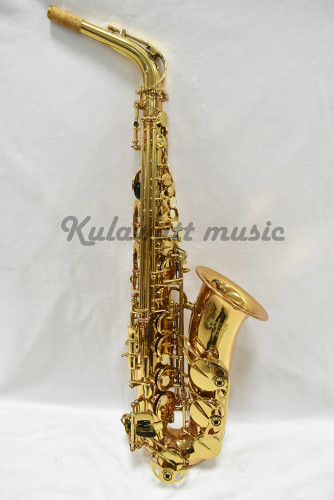 Grafton GAS-380 Standard Double Fixed Keys Alto Saxophone