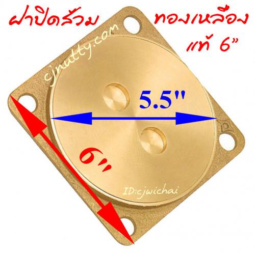 ฝาปิดส้วมทองเหลือง 6