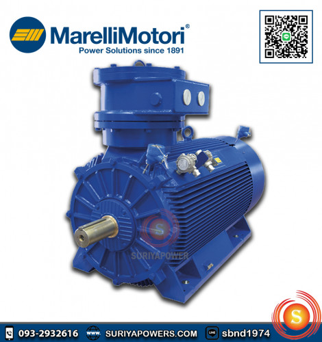 มอเตอร์เมอร์รารี่ Marelli 0.25 HP รุ่น MAA 63B4