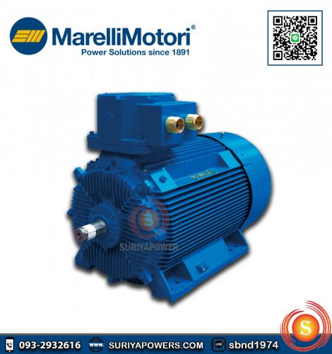มอเตอร์กันระเบิด Marelli Explosion Proof 30 HP รุ่น D5C180L4