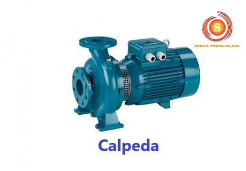 ปั๊มน้ำคาลปีด้า I Calpeda I THAI I NMS4 125/400  A/A
