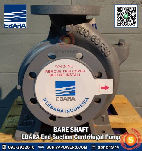 EBARA Bare Shaft เอบาร่า รุ่น 250x200 FSLA